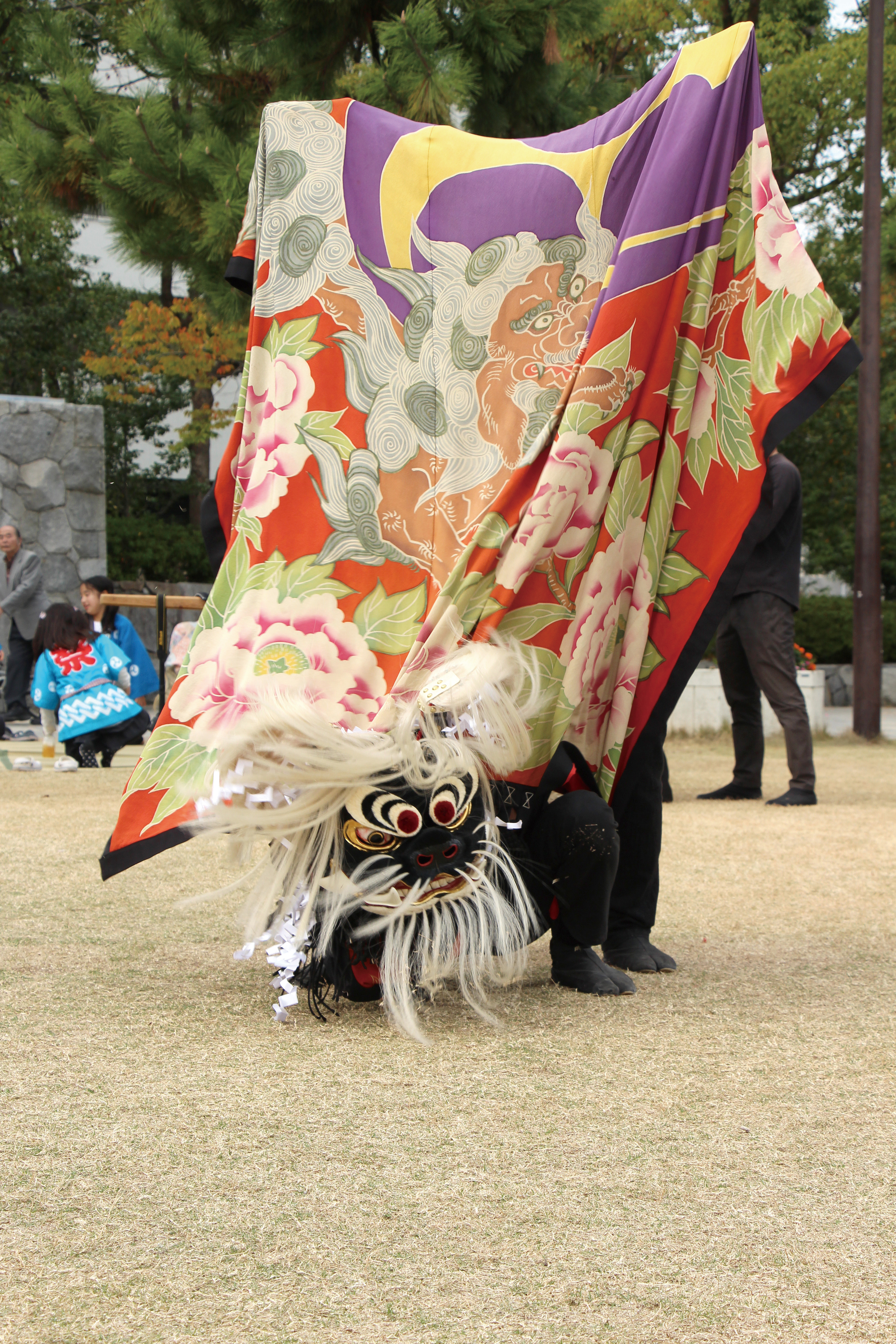 讃岐獅子舞:中組獅子保存会(なかぐみししほぞんかい)